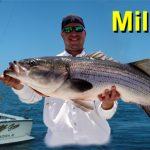 RI Blog Fish Miller Time.jpg