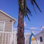 Summer Rentals Near Matunuck Beach, RI