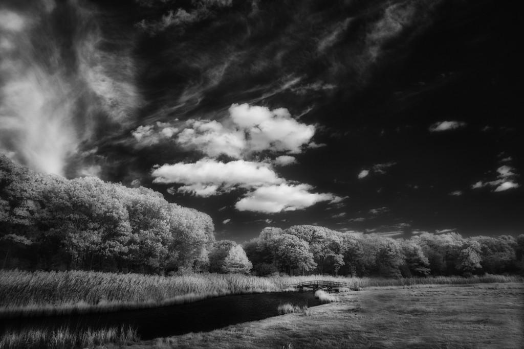 Greg Westfall Flickr