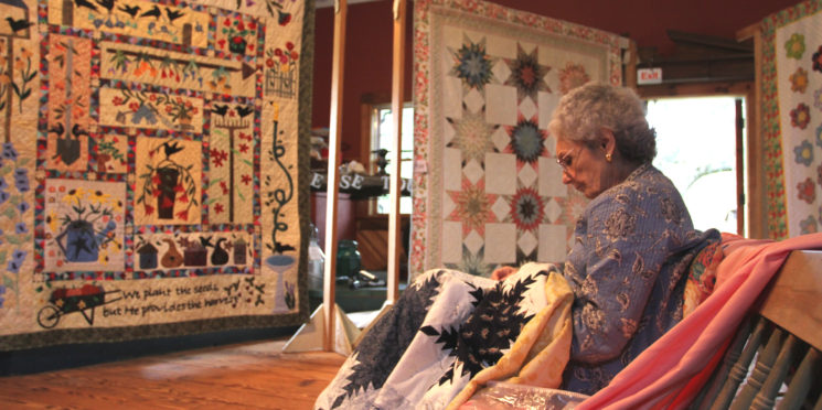 Quilt Show and Family Day at South County Museum!